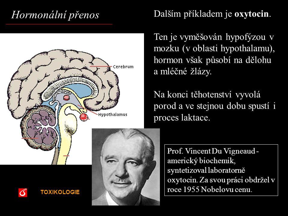 TOXIKOLOGIE VŠCHT Praha Dalším příkladem je oxytocin. Ten je vyměšován hypofýzou v mozku (v oblasti hypothalamu), hormon však působí na dělohu a mléčn