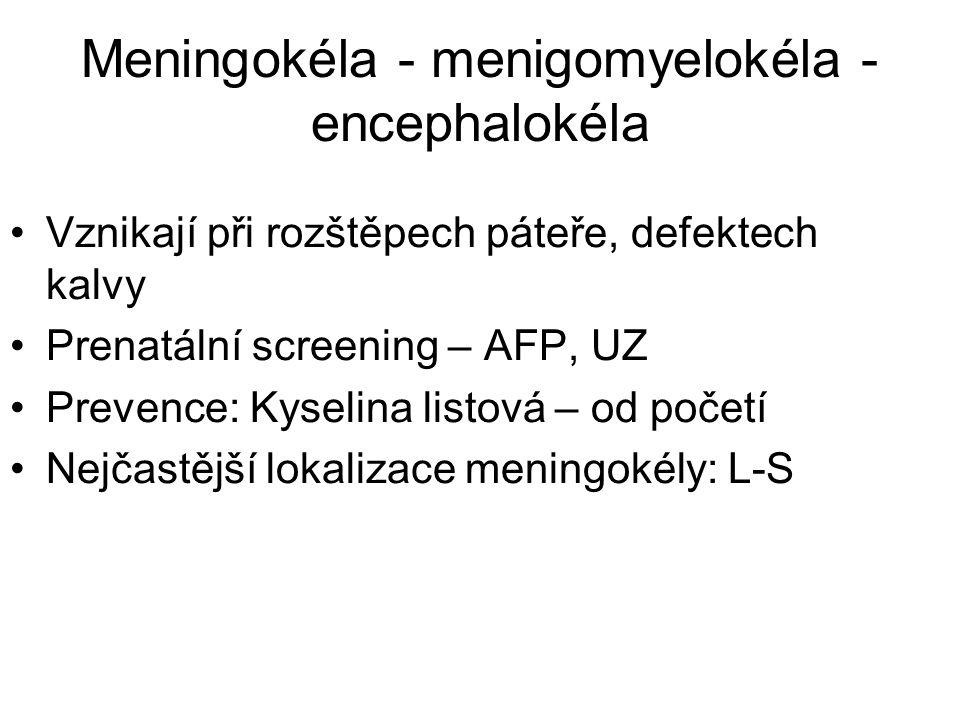 Meningokéla - menigomyelokéla - encephalokéla Vznikají při rozštěpech páteře, defektech kalvy Prenatální screening – AFP, UZ Prevence: Kyselina listová – od početí Nejčastější lokalizace meningokély: L-S