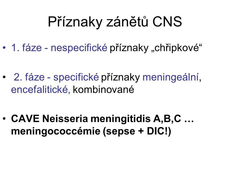 """Příznaky zánětů CNS 1. fáze - nespecifické příznaky """"chřipkové"""" 2. fáze - specifické příznaky meningeální, encefalitické, kombinované CAVE Neisseria m"""