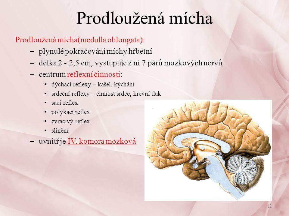 Prodloužená mícha Prodloužená mícha: centra retikulární formace: – kontrolují bdělost mozkové kůry, její energii, vědomí, pozornost – fungují nepřetržitě, a když impulsy oslabují, nastává klid a spánek – poškození - úrazy hlavy, záněty mozku: – nastává bezvědomí - koma, trvá až do nápravy poškození – obsahuje centra životně důležitých funkcí: – centrum dýchací - při zlomení krčních obratlů smrt – kardiovaskulární centrum – centrum pohybů trávícího ústrojí, vylučovací, vegetativní Nervová soustava13