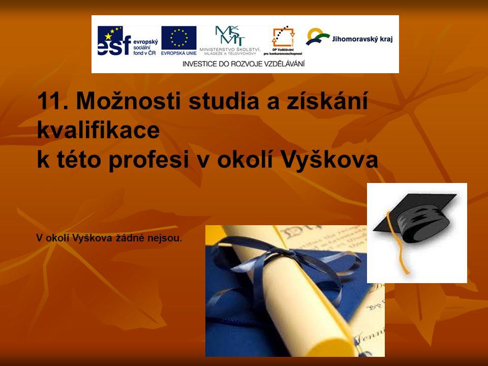 11. Možnosti studia a získání kvalifikace k této profesi v okolí Vyškova V okolí Vyškova žádné nejsou.