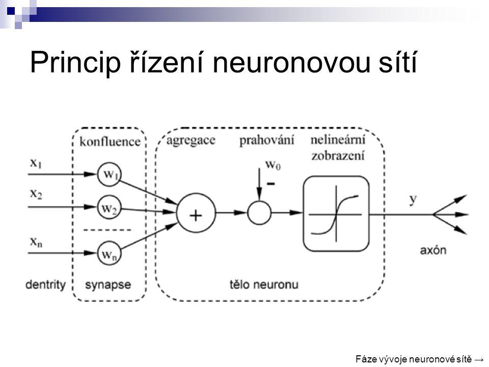 Princip řízení neuronovou sítí Fáze vývoje neuronové sítě →