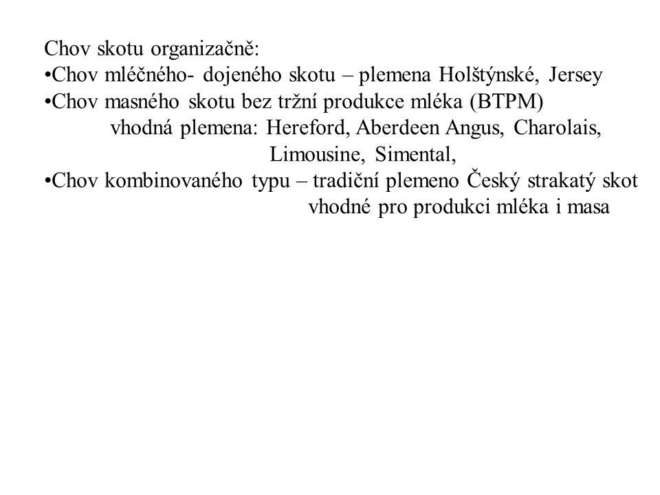 Chov skotu organizačně: Chov mléčného- dojeného skotu – plemena Holštýnské, Jersey Chov masného skotu bez tržní produkce mléka (BTPM) vhodná plemena: