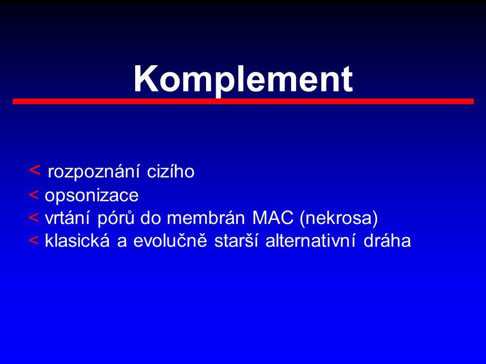 Komplement < rozpoznání cizího < opsonizace < vrtání pórů do membrán MAC (nekrosa) < klasická a evolučně starší alternativní dráha
