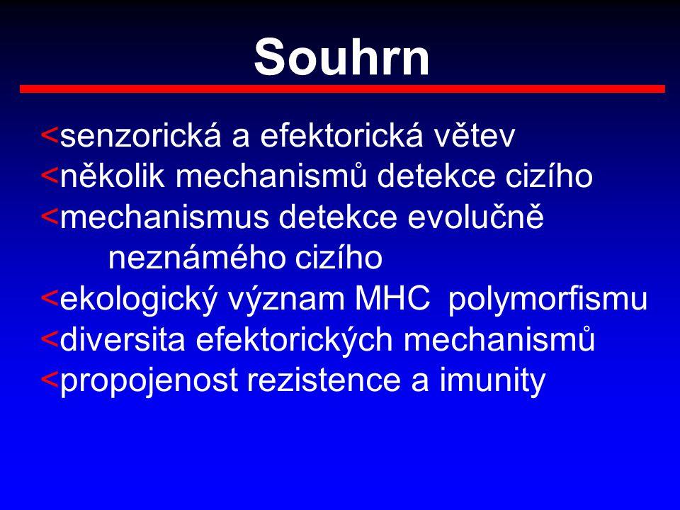 Souhrn <senzorická a efektorická větev <několik mechanismů detekce cizího <mechanismus detekce evolučně neznámého cizího <ekologický význam MHC polymo