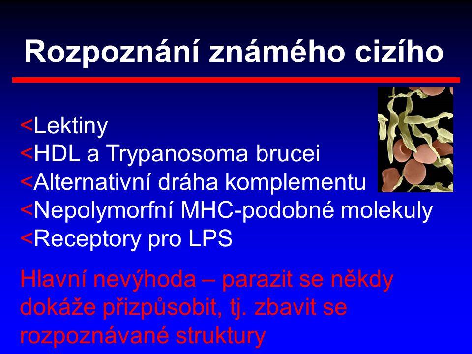 Rozpoznání známého cizího <Lektiny <HDL a Trypanosoma brucei <Alternativní dráha komplementu <Nepolymorfní MHC-podobné molekuly <Receptory pro LPS Hla