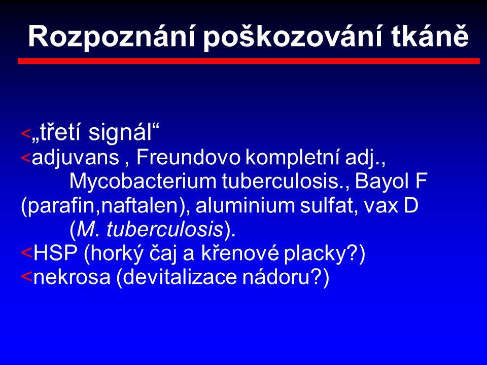 """Rozpoznání poškozování tkáně < """"třetí signál"""" < adjuvans, Freundovo kompletní adj., Mycobacterium tuberculosis., Bayol F (parafin,naftalen), aluminium"""