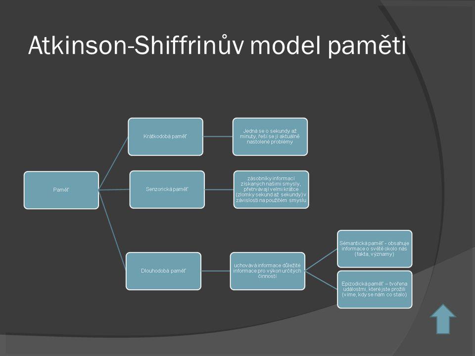 Atkinson-Shiffrinův model paměti