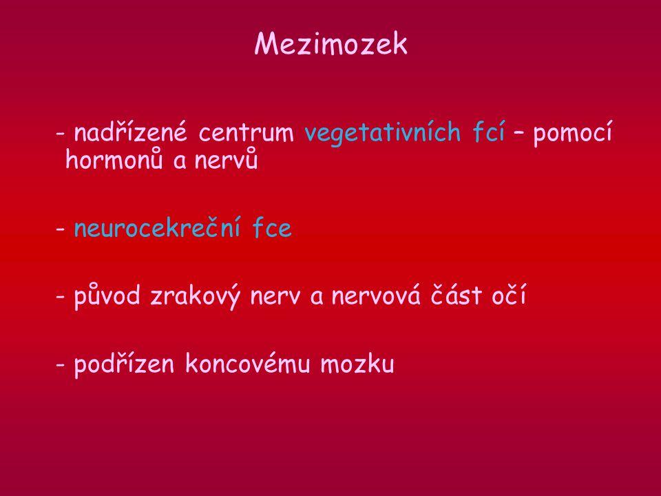 - nadřízené centrum vegetativních fcí – pomocí hormonů a nervů - neurocekreční fce - původ zrakový nerv a nervová část očí - podřízen koncovému mozku