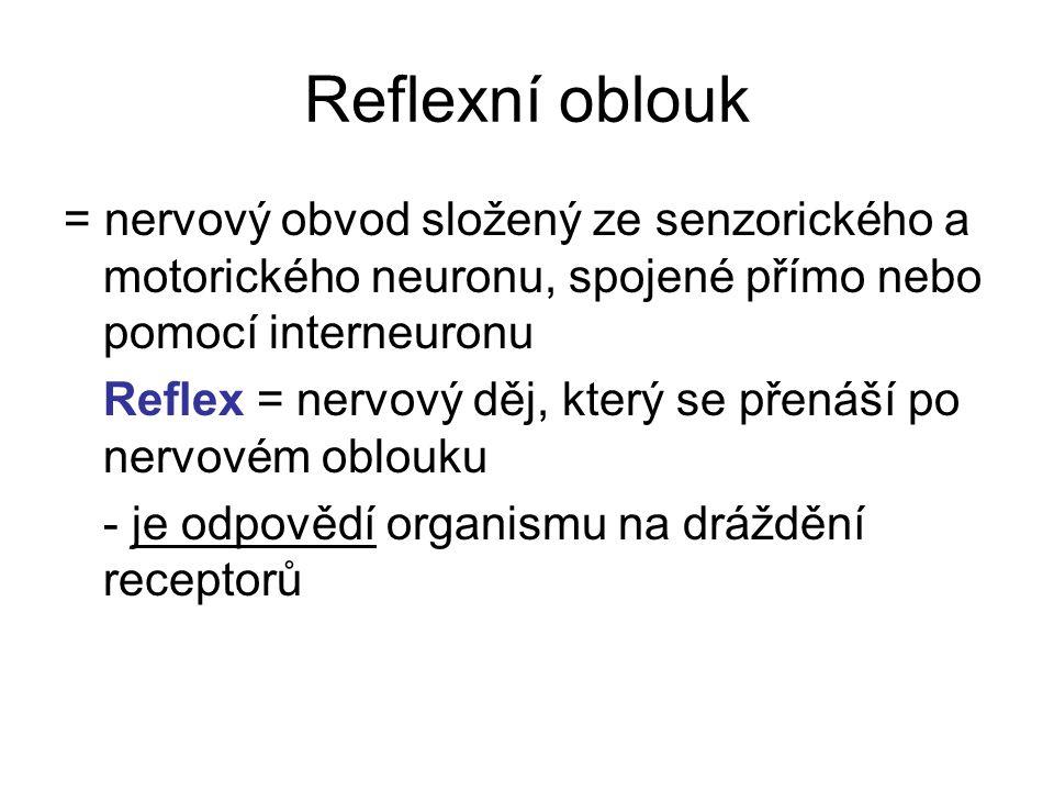 Reflexní oblouk = nervový obvod složený ze senzorického a motorického neuronu, spojené přímo nebo pomocí interneuronu Reflex = nervový děj, který se p