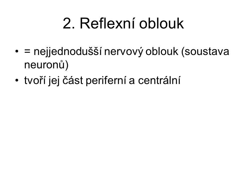 2. Reflexní oblouk = nejjednodušší nervový oblouk (soustava neuronů) tvoří jej část periferní a centrální