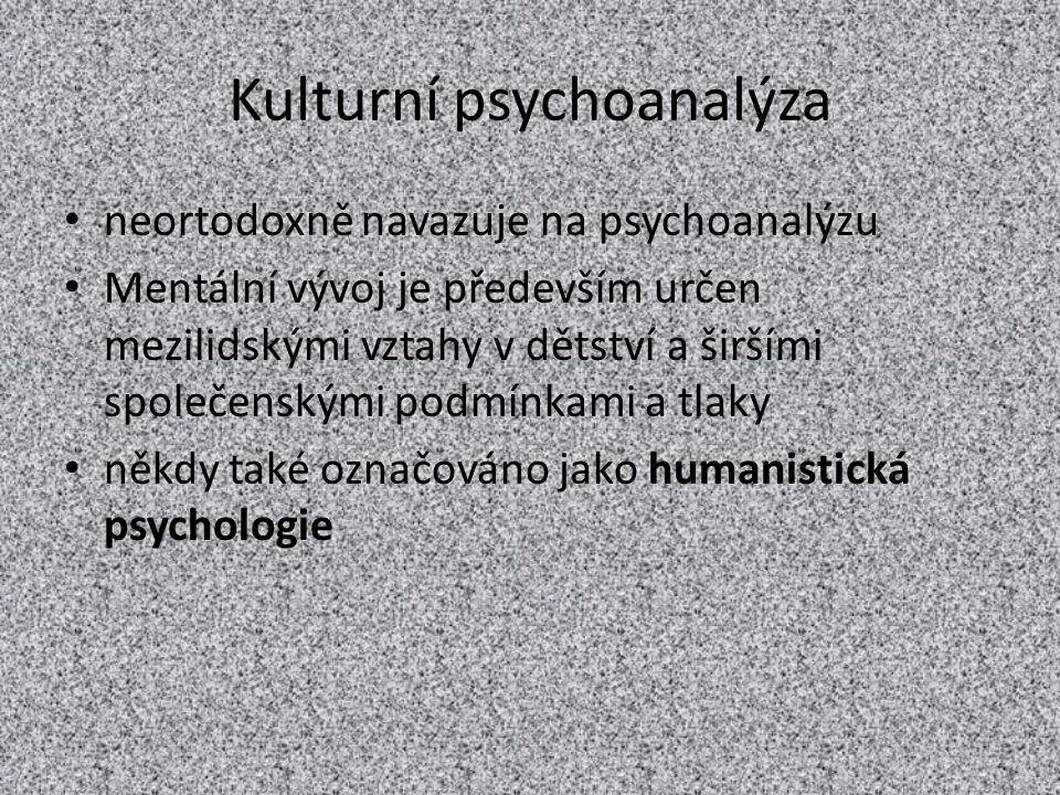 Kulturní psychoanalýza neortodoxně navazuje na psychoanalýzu Mentální vývoj je především určen mezilidskými vztahy v dětství a širšími společenskými p