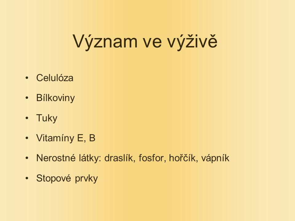 Význam ve výživě Celulóza Bílkoviny Tuky Vitamíny E, B Nerostné látky: draslík, fosfor, hořčík, vápník Stopové prvky