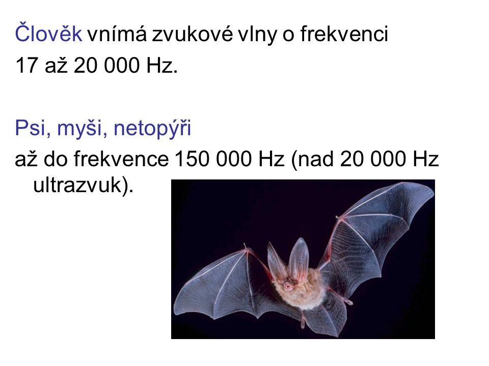 Člověk vnímá zvukové vlny o frekvenci 17 až 20 000 Hz. Psi, myši, netopýři až do frekvence 150 000 Hz (nad 20 000 Hz ultrazvuk).