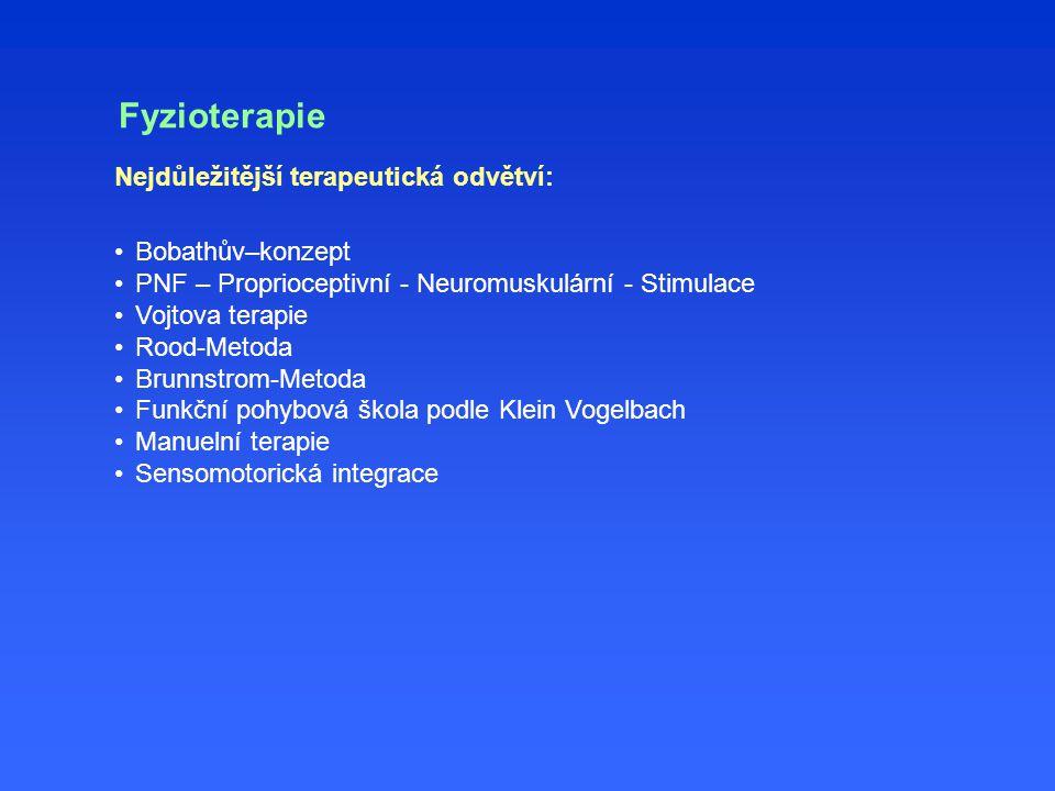 Nejdůležitější terapeutická odvětví: Bobathův–konzept PNF – Proprioceptivní - Neuromuskulární - Stimulace Vojtova terapie Rood-Metoda Brunnstrom-Metoda Funkční pohybová škola podle Klein Vogelbach Manuelní terapie Sensomotorická integrace