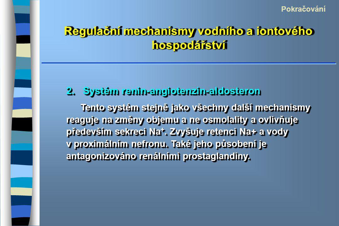 Regulační mechanismy vodního a iontového hospodářství 2. Systém renin-angiotenzin-aldosteron Tento systém stejně jako všechny další mechanismy reaguje