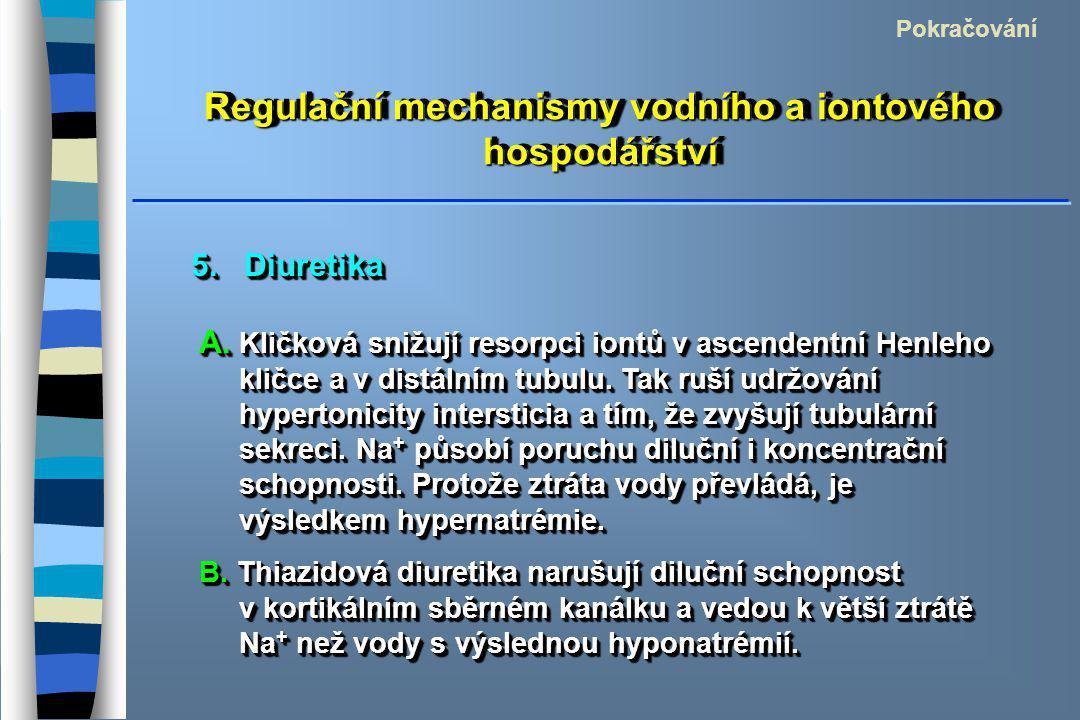 Regulační mechanismy vodního a iontového hospodářství Pokračování 5. Diuretika A. Kličková snižují resorpci iontů v ascendentní Henleho kličce a v dis