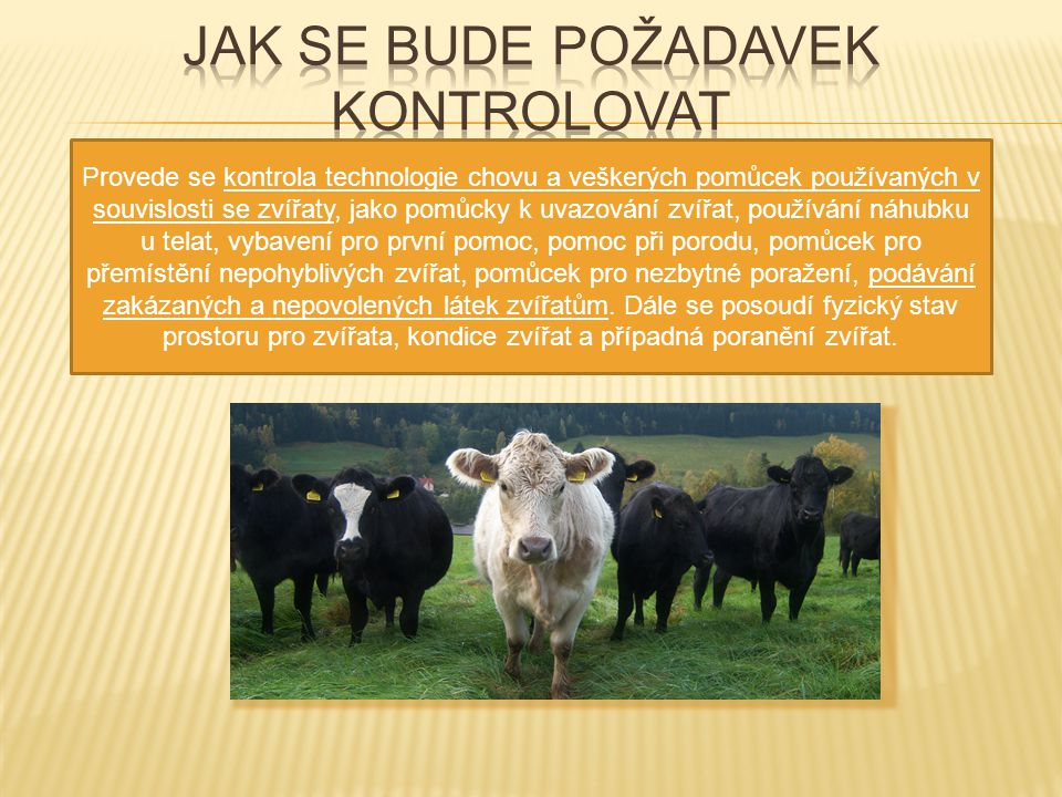 Provede se kontrola technologie chovu a veškerých pomůcek používaných v souvislosti se zvířaty, jako pomůcky k uvazování zvířat, používání náhubku u t