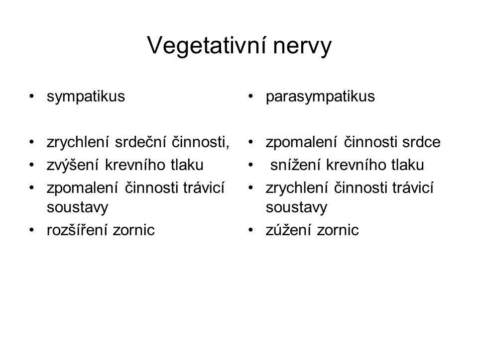 Vegetativní nervy sympatikus zrychlení srdeční činnosti, zvýšení krevního tlaku zpomalení činnosti trávicí soustavy rozšíření zornic parasympatikus zp