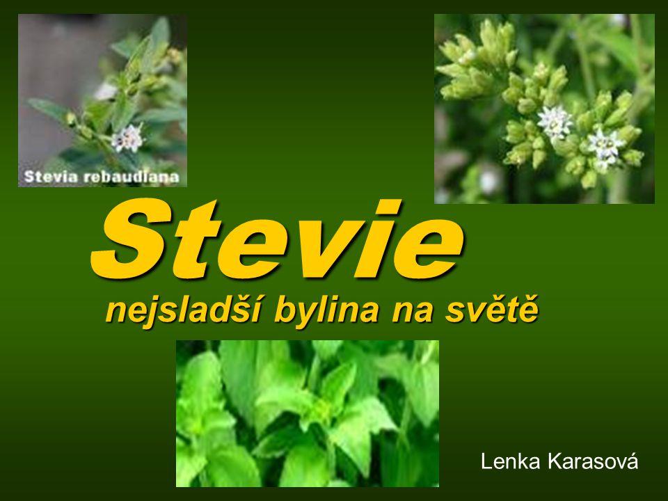 Stevie nejsladší bylina na světě Lenka Karasová