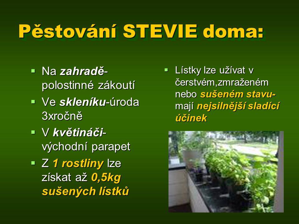 Pěstování STEVIE doma:  Na zahradě- polostinné zákoutí  Ve skleníku-úroda 3xročně  V květináči- východní parapet  Z 1 rostliny lze získat až 0,5kg