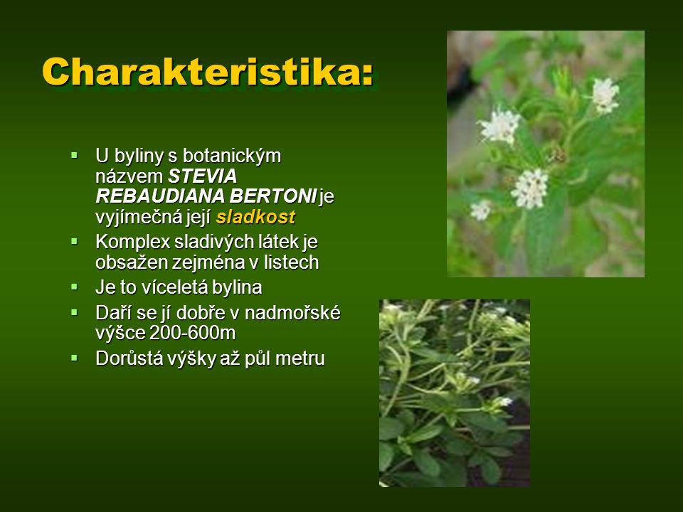 Charakteristika:Charakteristika:  U byliny s botanickým názvem STEVIA REBAUDIANA BERTONI je vyjímečná její sladkost  Komplex sladivých látek je obsa