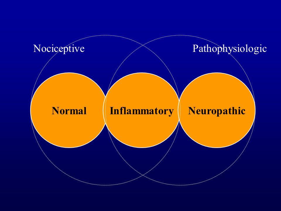 NormalInflammatoryNeuropathic NociceptivePathophysiologic