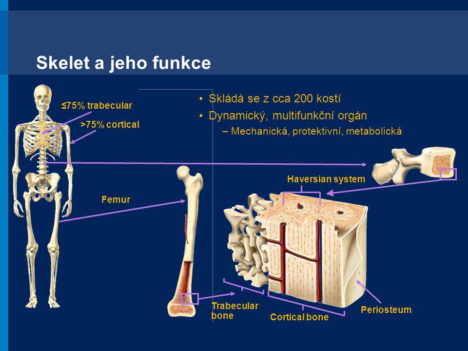 1.Reprinted from Sone T, et al.Bone. 2004;35:432-438.