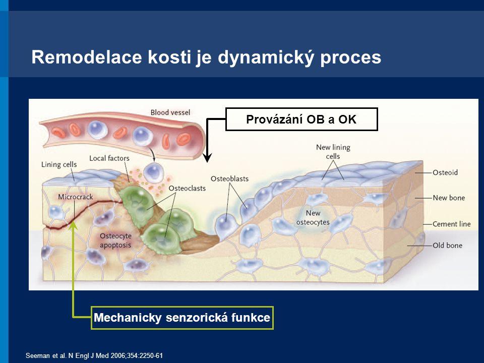 RANK Ligand je důležitým mediátorem tvorby, funkce a přežívání osteoklastů Osteoblasts Activated Osteoclast CFU-M Pre-Fusion Osteoclast Multinucleated Osteoclast Hormony Růstové faktory Cytokiny Tvorba kosti Odbourávání kosti Adapted from Boyle WJ, et al.