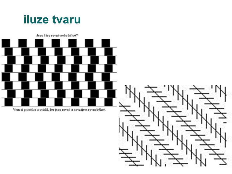 iluze tvaru