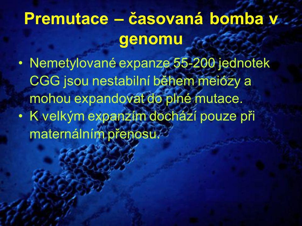 Premutace – časovaná bomba v genomu Nemetylované expanze 55-200 jednotek CGG jsou nestabilní během meiózy a mohou expandovat do plné mutace. K velkým