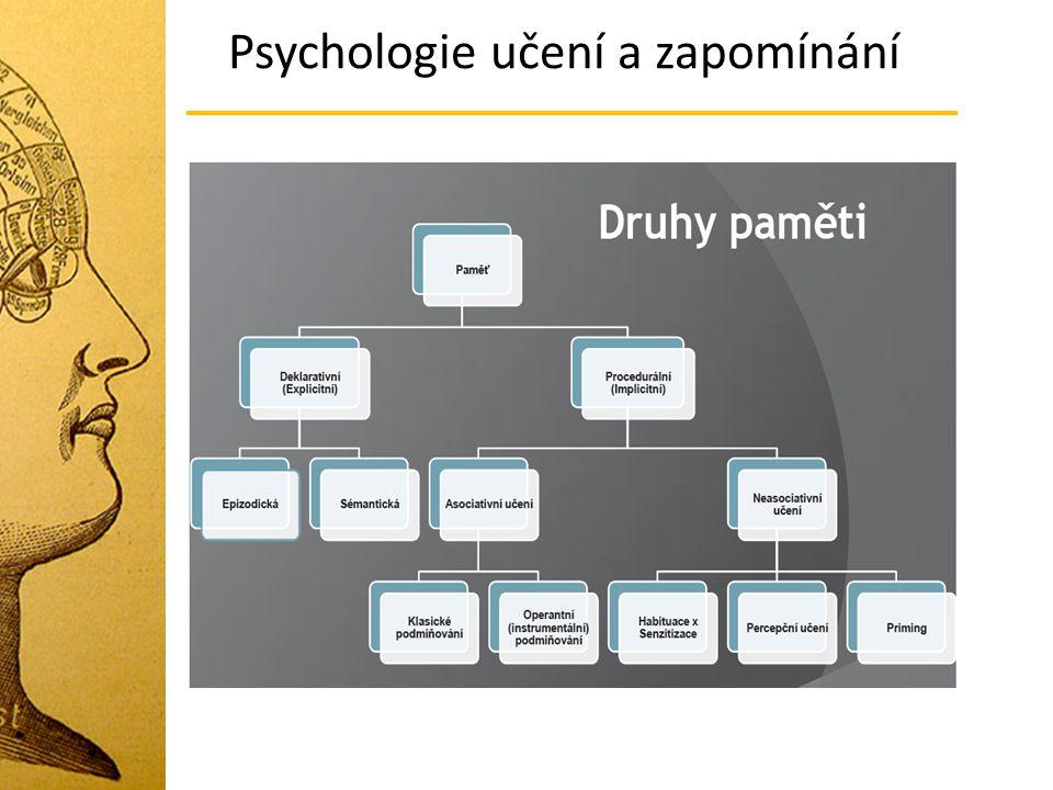 Dělení b) podle formy ukládání informací Vizuální Akustická Sémantická (ukládání významu informace) Psychologie učení a zapomínání