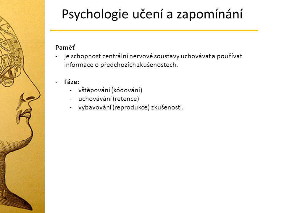 Paměť -je schopnost centrální nervové soustavy uchovávat a používat informace o předchozích zkušenostech. -Fáze: -vštěpování (kódování) -uchovávání (r