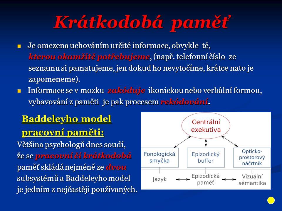 Krátkodobá paměť Je omezena uchováním určité informace, obvykle té, Je omezena uchováním určité informace, obvykle té, kterou okamžitě potřebujeme, (např.