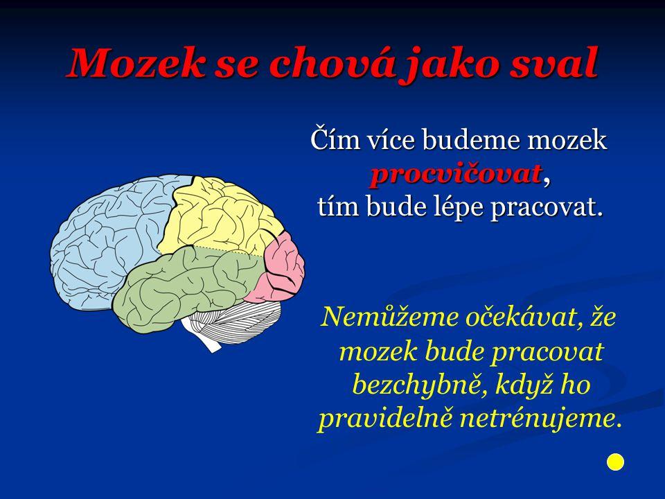 Mozek se chová jako sval Čím více budeme mozek procvičovat, tím bude lépe pracovat.