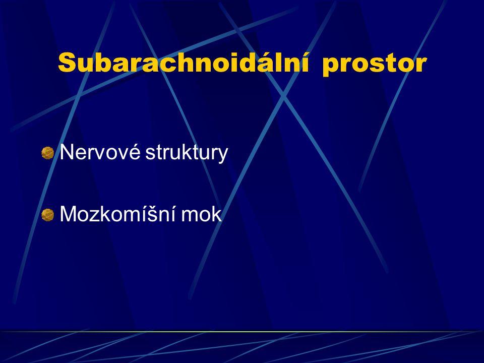 Subarachnoidální prostor a lokální anestetikum Hyperbarické (Ultracain hyperbar 5%, Marcaine spinal heavy) Izobarické (Marcaine spinal, Chirocaine 0,5%) Hypobarické
