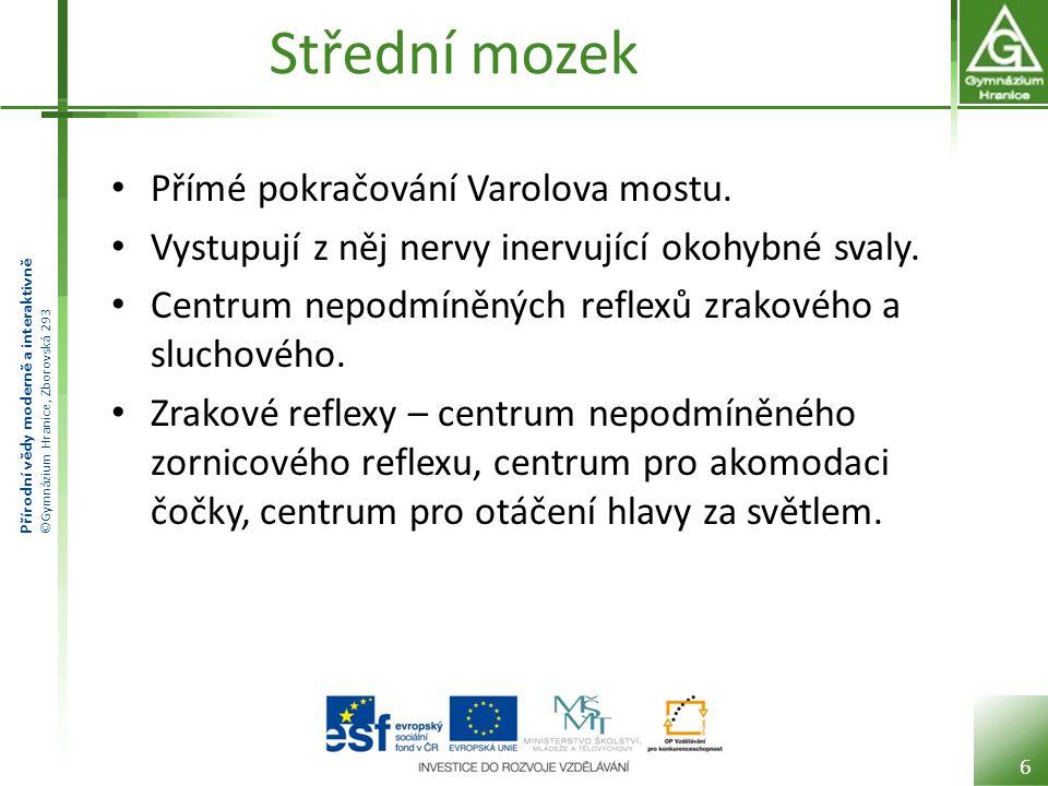 Přírodní vědy moderně a interaktivně ©Gymnázium Hranice, Zborovská 293 Střední mozek Končí zde část vláken zrakového nervu.