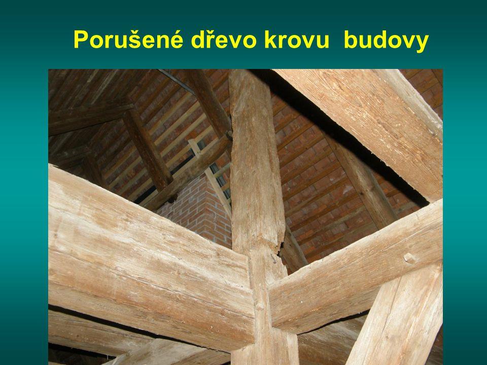 Porušené dřevo krovu budovy