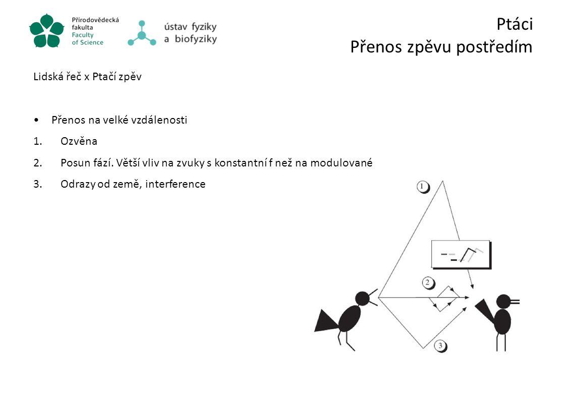 Ptáci Přenos zpěvu postředím Lidská řeč x Ptačí zpěv Přenos na velké vzdálenosti 1.Ozvěna 2.Posun fází. Větší vliv na zvuky s konstantní f než na modu