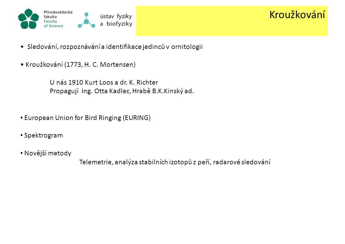 Kroužkování Sledování, rozpoznávání a identifikace jedinců v ornitologii Kroužkování (1773, H. C. Mortensen) U nás 1910 Kurt Loos a dr. K. Richter Pro