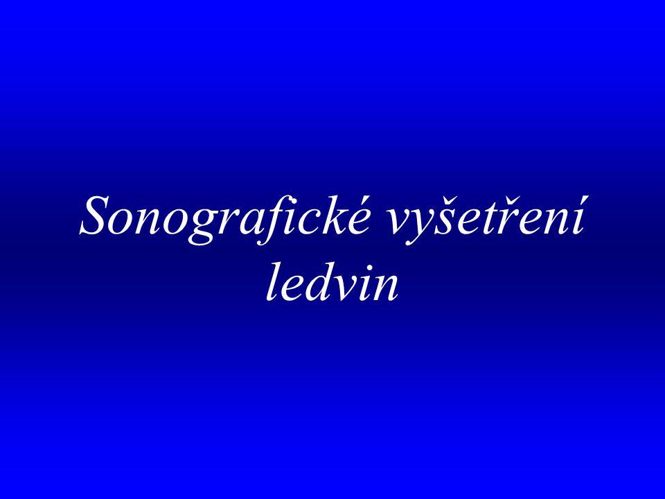 aa Sonografické vyšetření ledvin