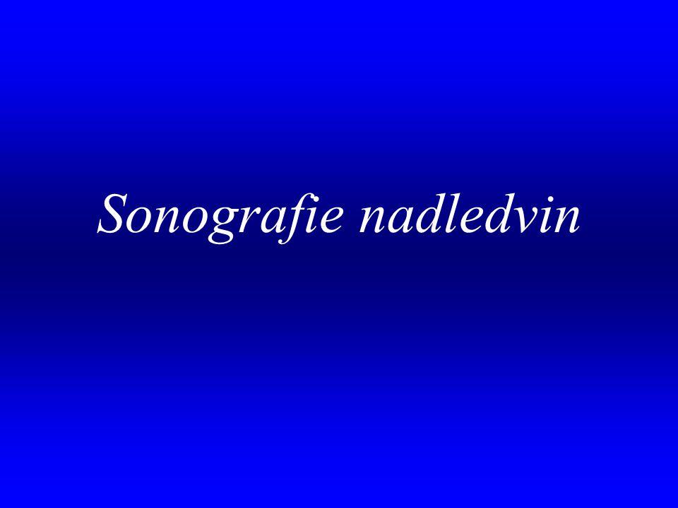 . Sonografie nadledvin