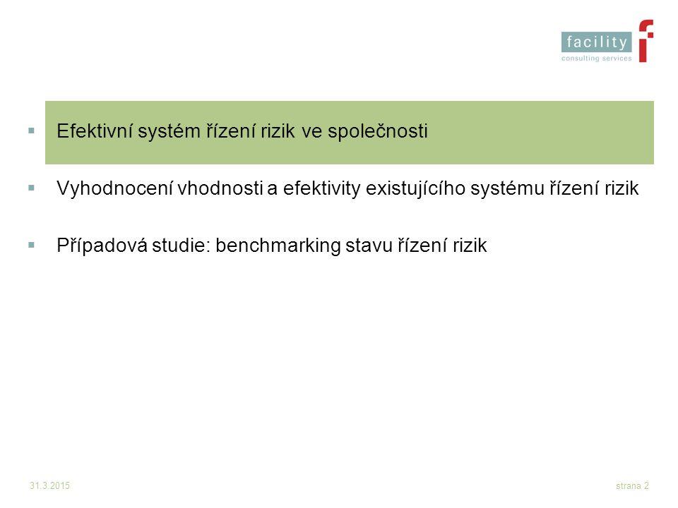 31.3.2015strana 2  Efektivní systém řízení rizik ve společnosti  Vyhodnocení vhodnosti a efektivity existujícího systému řízení rizik  Případová st