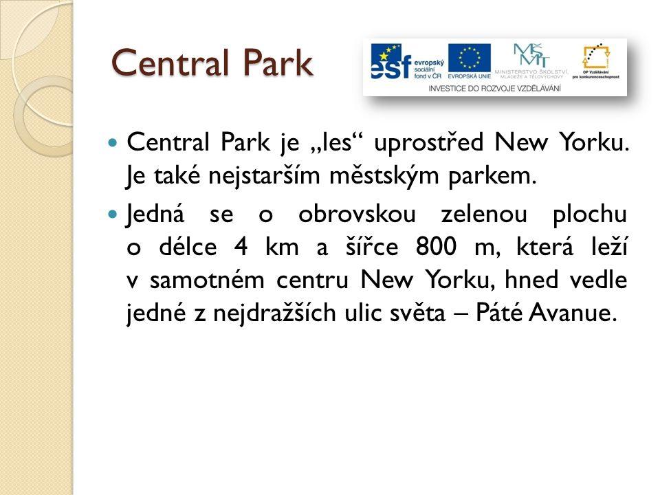 """Central Park Central Park je """"les"""" uprostřed New Yorku. Je také nejstarším městským parkem. Jedná se o obrovskou zelenou plochu o délce 4 km a šířce 8"""