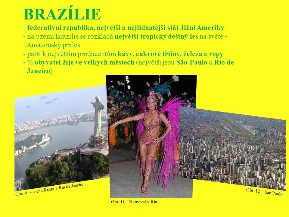 BRAZÍLIE - federativní republika, největší a nejlidnatější stát Jižní Ameriky - na území Brazílie se rozkládá největší tropický deštný les na světě -