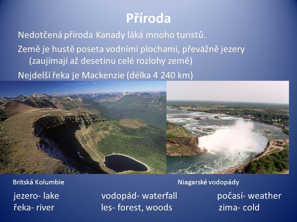 Příroda Nedotčená příroda Kanady láká mnoho turistů. Země je hustě poseta vodními plochami, převážně jezery (zaujímají až desetinu celé rozlohy země)