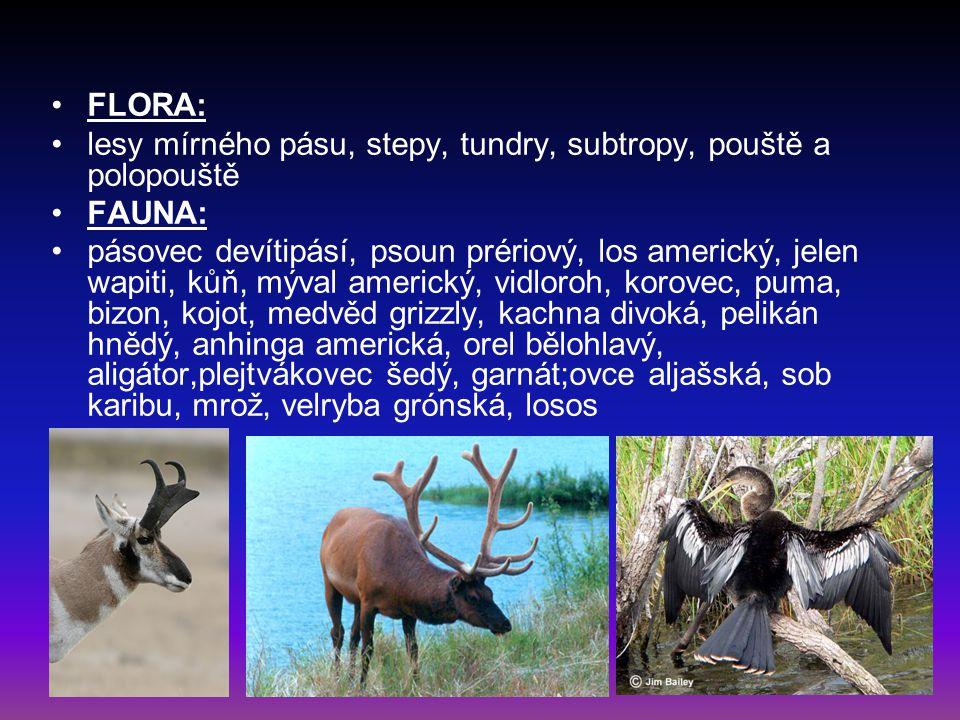 FLORA: lesy mírného pásu, stepy, tundry, subtropy, pouště a polopouště FAUNA: pásovec devítipásí, psoun prériový, los americký, jelen wapiti, kůň, mýv
