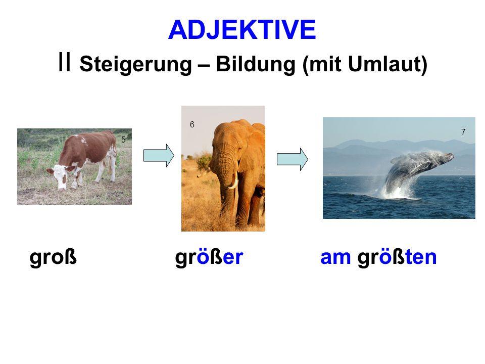 ADJEKTIVE II Steigerung – Bildung (mit Umlaut) Umlaut im Komparativ und Superlativ: aä (lang -länger - am längsten) oö( groß -größer - am größten) uü( dumm - dümmer – am dümmsten)