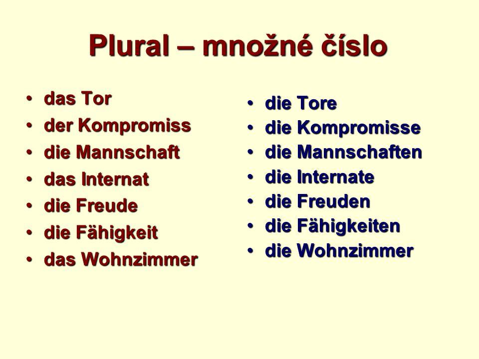 Plural – množné číslo das Tordas Tor der Kompromissder Kompromiss die Mannschaftdie Mannschaft das Internatdas Internat die Freudedie Freude die Fähig