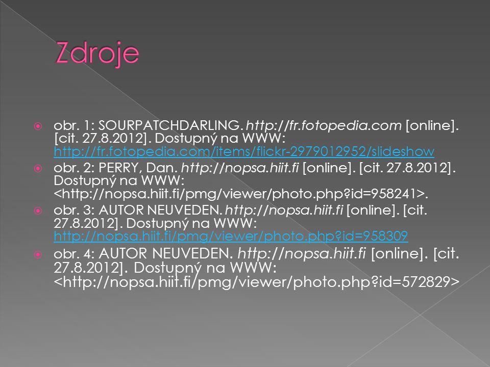  obr. 1: SOURPATCHDARLING. http://fr.fotopedia.com [online].